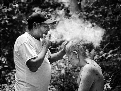 Soplada usage rituel du tabac chamanisme végétaliste amazonien soin  médicinal