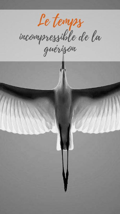 Le temps incompressible de la guérison deuil transformation connaissance de soi avec le Yoga et la psychothérapie Guillaume Calabretto
